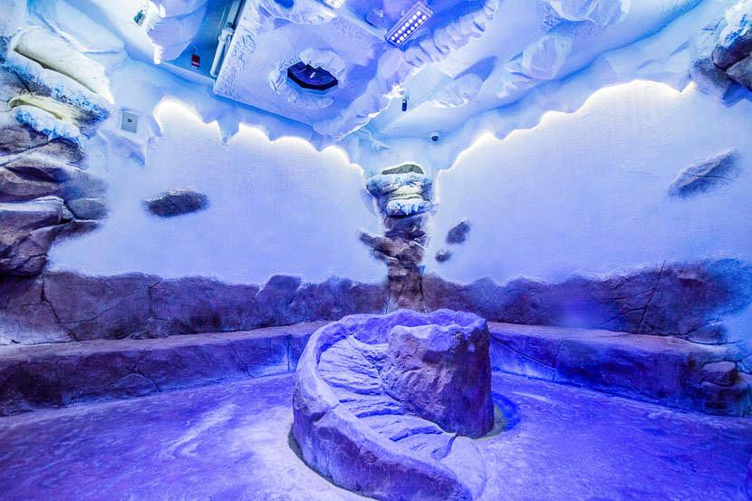 """Featured image for """"Dubai Mall Penguinarium"""""""
